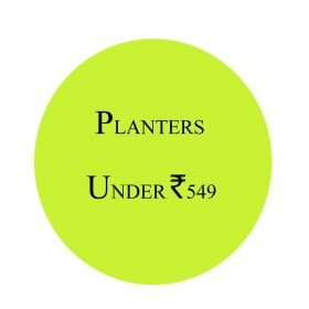 Planters under Rs549